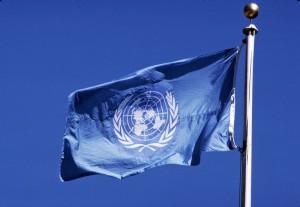 Vlajka OSN
