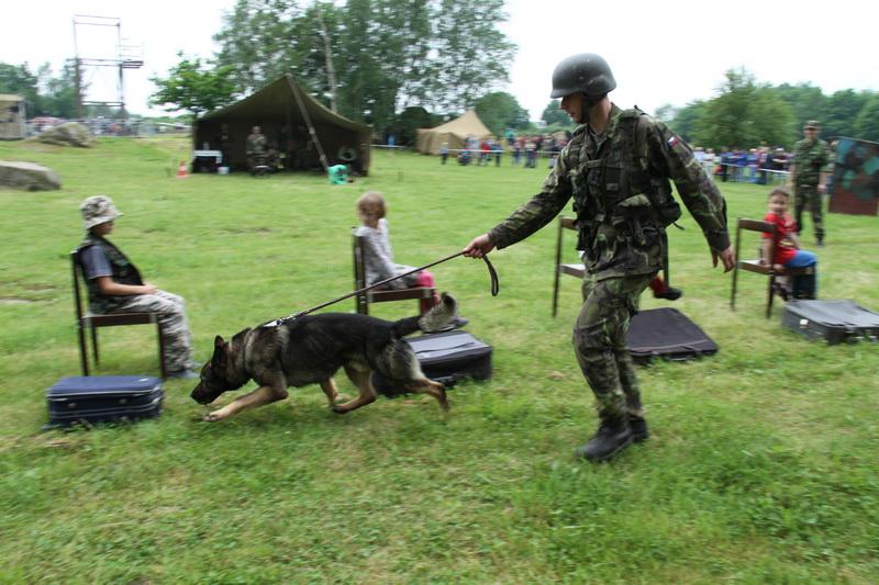 Výcvik služebních psů z kynologického centra Chotyně