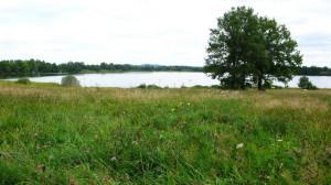 Rybník Markovec, kde proběhla bitva