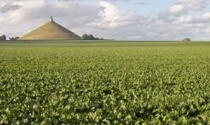 Mohyla a památník bitvy u Waterloo
