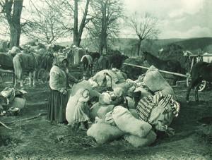 Haličtí uprchlíci na útěku. Do počátku května 1915 se Rakousko-Uhersko muselo postarat o 400 000 obyvatel ze svých válkou zasažených území, přičemž v Čechách a na Moravě nalezlo azyl přes 150 000 z nich. Po průlomu u Gorlice a Tarnówa se část těchto uprchlíků mohla vrátit k tomu, co zbývalo z jejich domovů.
