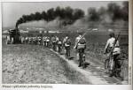 Nový HaV: vojáci na kolech i na golfových hřištích