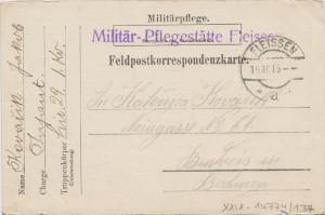 Dopisnice rakousko-uherské polní pošty z roku 1915 s razítkem vojenského zdravotního zařízení v Plesné u Karlových Varů.