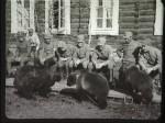 Medvědi 1. pluku