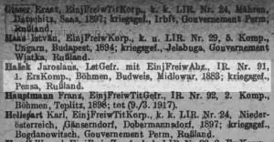 Záznam o Haškově zajetí v Seznamech ztrát v oddíle určeném pro jednoroční dobrovolníky. Jako domovskou obec má uvedeny jihočeské Mydlovary, odkud pocházel jeho otec. Proto také Hašek sloužil u 91. pluku a ne u některé z pražských jednotek.