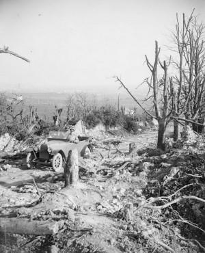 William Joseph Brunell: Zdevastovaná krajina kolem cesty do Nervesy v okolí Piavy, prosinec 1918. FOTO: IWM