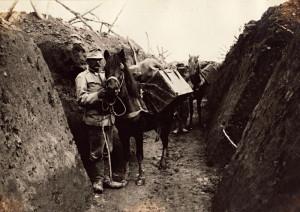 Várnice (kochkiste) k přípravě a přenosu stravy byly převáženy na hřbetech zvířat, po jedné na každé straně. FOTO: VUA–VHA