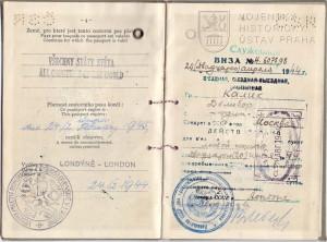 Cestovní pas Dalibora Kalíka