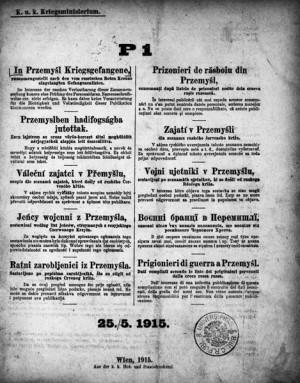 Titulní list prvního čísla seznamů se jmény rakousko-uherských vojáků, jež ruská carská armáda zajala po kapitulaci pevnosti Přemyšlu. FOTO: VHÚ Praha