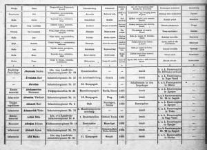 Ukázka záznamů o raněných a nemocných z počátku války ... FOTO: VHÚ Praha