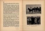 Vpád maďarských boľševikov na Slovensko v roku 1919