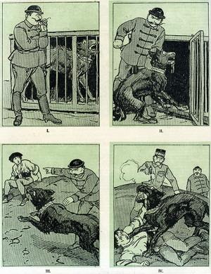 Českým karikaturistům otrnulo, a tak své čtenáře počastovali ještě několika odlehčenými kresbami na téma právě ukončených bojů. Například touto parafrází příběhu o psu baskervilském – zde budapešťském. (VHÚ Praha)