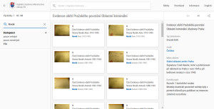 Příklad fulltextového vyhledávání příjmení Novák, které je v kartotéce uvedeno na 44 lístcích.
