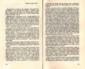 Příklad autorových prožitků v imaginárním dopise z Osvětimi.