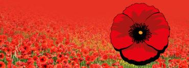 Připomínáme si Den válečných veteránů: nejen vojáci dvou světových válek, ale i současní veteráni z misí naší armády