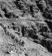 Pochodové cvičení v pouštním terénu u Jericha  (MO ČR)