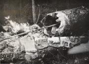 Fotografie ze spisu Veřejné bezpečnosti, pořízené svědkem Jiřím Vaňkem. Na některých snímcích sledují oheň sami sovětští letci. (ABS)